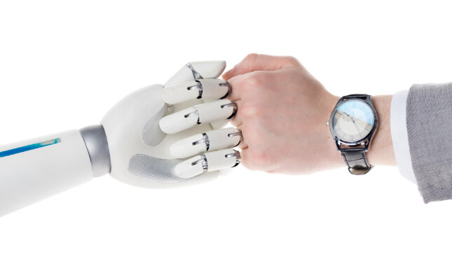 Crear robots.txt personalizado